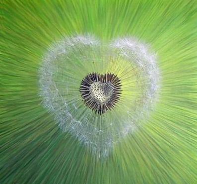 Énergie et Conscience : Ouvrez-vous à la magie de qui vous êtes...